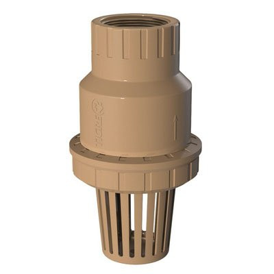Threadable Foot Valve